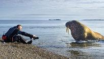 Spitsbergen tem o banco de sementes mais vigiado do mundo.Com mais de 250 milhões de sementes vindas de todo o mundo e cuidadosamente embaladas em pacotes embrulhados e lacrados em material resistente.Há um motivo pelo qual os cientistas escolheram Spitsbergen para abrigar o banco de sementes: a ilha não é atingida por atividades tectônicas, tem um solo de permafrost (que ajuda na conservação) e está a 130 metros acima do nível do mar, o que garante que o local continuará seco mesmo se o aquecimento global provocar o derretimento das calotas polares.©Fotodom.ru/Rex Features