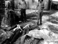 Araguaia: o massacre que as Forças Armadas querem apagar. 15201.jpeg